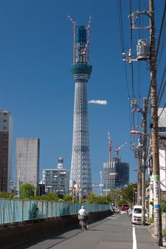 20101011_0970