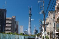 20101011_0971