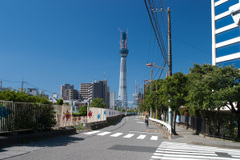 20101011_0972