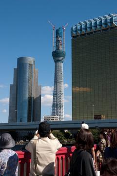 20101011_0992_2