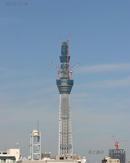 20101124_1080